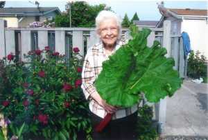 She loved Rhubarb and grew lots of it up in Sequim.